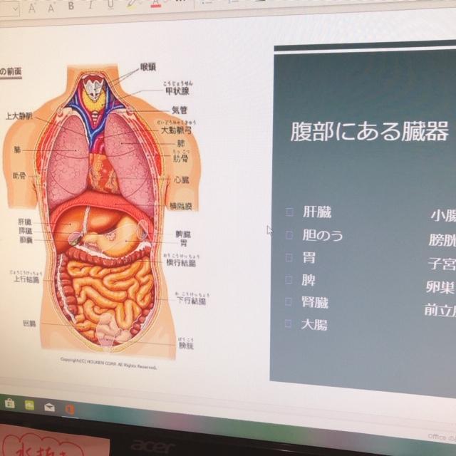腸ケア資料